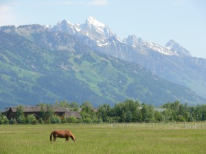 Entering Jackson Hole, Wyoming. Grand Tetons in the distance